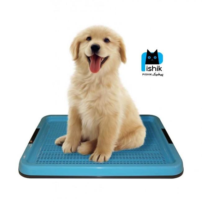 توالت و سینی آموزشی سگ سایز بزرگ