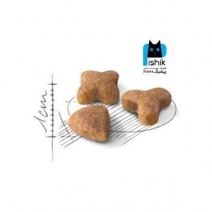 غذای خشک گربه سنسیبل رویال کنین 2 کیلوگرمی Royal Canin Sensible