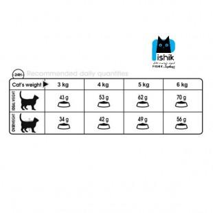 غذای خشک گربه دایجستیو رویال کنین 2 کیلوگرمی Royal Canin Digestive Care