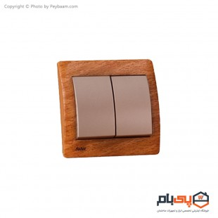 کلید دو پل ثابت الکتریک مدل پویان
