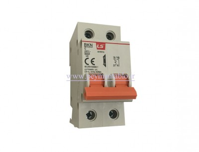 کلید مینیاتوری (mcb) دو پل / دو فاز 63 آمپر ، LS