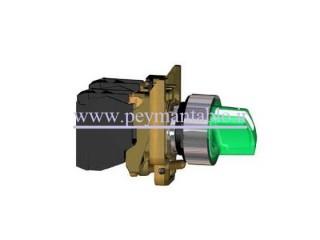 کلید فرمان یک طرفه چراغدار (1--0) فلزی Schneider electric