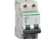 کلید مینیاتوری (mcb) دو پل / دو فاز 2 آمپر Schneider electric