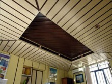 Types of ceilings sync (Dampa)