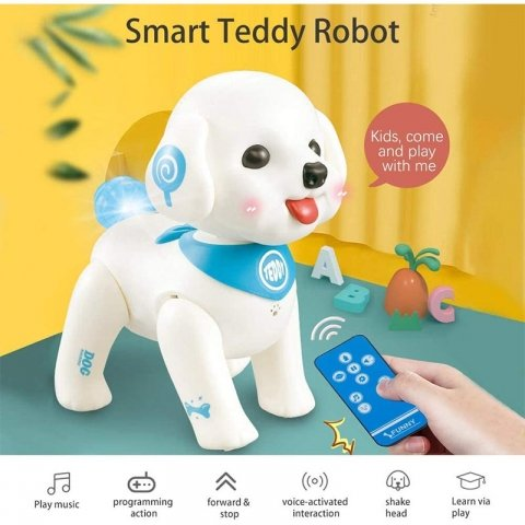 ربات کنترلیسگ
