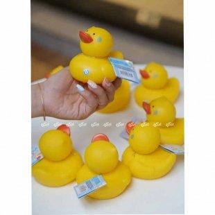 اسباب بازی حمام اردک تولو