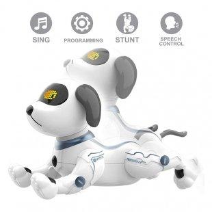 سگ کنترلی