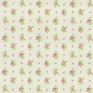 کاغذ دیواری انگلیسی اتاق کودک - هوپلا DL 30728