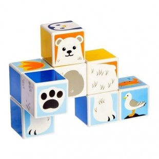 خرید اسباب بازی مگنتی حیوانات قطبی 8 تکه