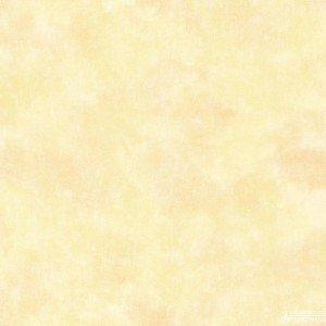 کاغذ دیواری انگلیسی اتاق کودک - تاینی تاتز  G45112 tiny tots