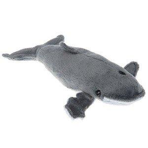 حیوانات دریایی lelly (نهنگ)