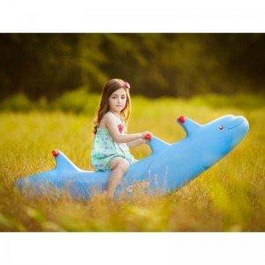 الاکلنگ تعادلی کودک دلفین پیکو (سه نفره)
