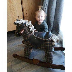 خرید راکر کودک اسب چوبی  روفوس و تد little bird مدل 3018