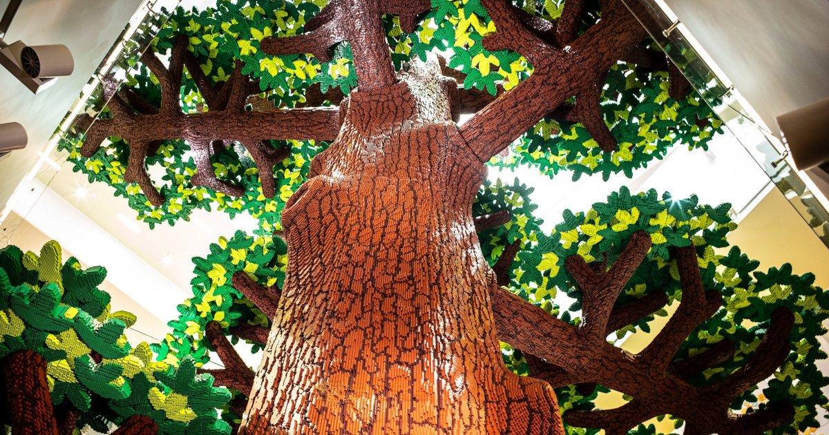 tree of ceativity 36