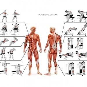 دستگاه محرک عضلانی و لاغری  EMS Powertone