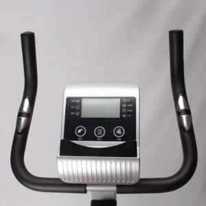 دوچرخه ثابت ایستاده مگنتی مارشال فیتنس مدل MF110B