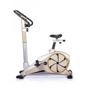 دوچرخه ثابت مگنتیک تایگر اسپرت