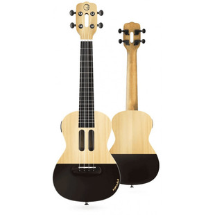 3144-umnoe-ukulele-mi-populele-smart-ukulele-u1_9859_1024