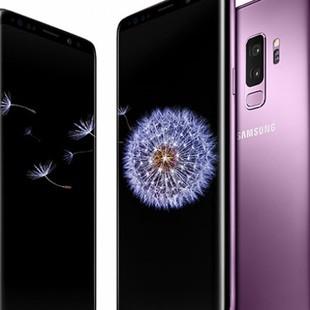 star_kv_purple_mmo-970×500
