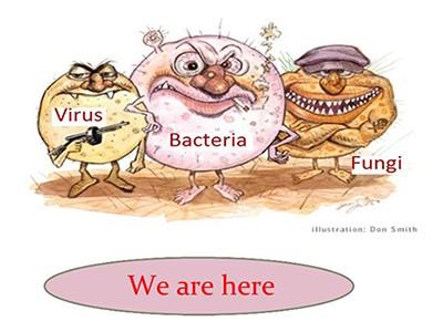 منابع آلودگی میکروبی در اتاق های تمیز