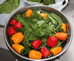 روش های ضد عفونی سبزیجات