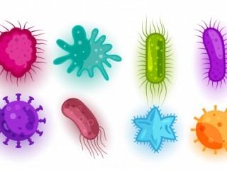 خواص ضد ویروسی نانوذرات نقره