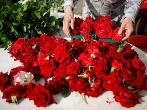 چه طور گلفروش موفقی باشیم؟ گفتار اول: به روز باشید