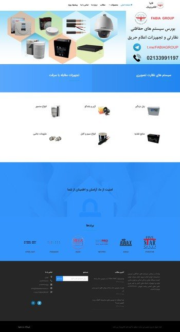 طراحی فروشگاه اینترنتی گروه فابیا الکترونیک, فروش دزدگیر اماکن و لوازم جانبی
