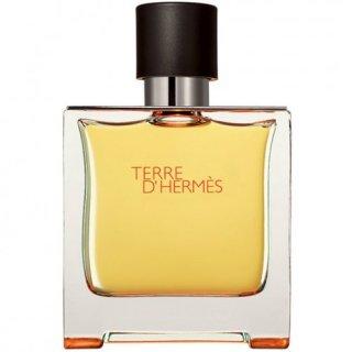 عطر مردانه هرمس – تق هرمس ادو پرفیوم   (HERMES- Terre d'Hermes EDP)