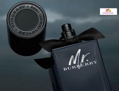 عطر مردانه مستر باربری ادو پارفوم برند باربری  ( BURBERRY -  MR.BURBERRY EAU DE PARFUM  )