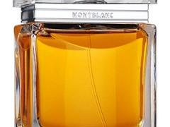 عطر مردانه مون بلان – هوم اکسپشنل (mont blanc - Homme Exceptionnel)