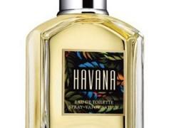 عطر مردانه  هاوانا  برند آرامیس  ( Aramis   - Havana  )