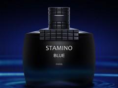 عطر مردانه استامینو بلو  برند پرایم کالکشن  (  Prime Collection -  stamino blue  )