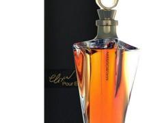 عطر زنانه مابوسین الگزیر پور ال  برند مابوسین  (  MAUBOUSSIN  -  MAUBOUSSIN L'Elixir Pour Elle   )