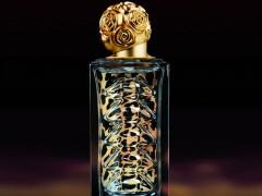 عطر و ادکلن زنانه دالی وایلد برند سالوادور دالی  (   SALVADOR DALI   -  DALI WILD   )