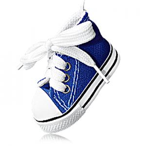 خوشبو کننده آویز کفشی آرئون (1).png