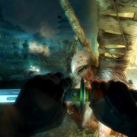shadow-warrior-special-edition-3[1].jpg