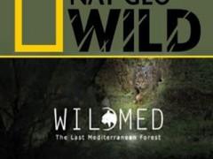 دانلود مستند Wildmed The Last Mediterranean Forest 2015