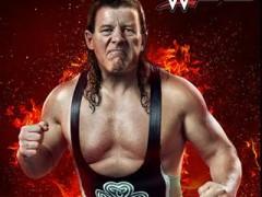 دانلود WWE 2015 DLC Pack Addon برای کامپیوتر