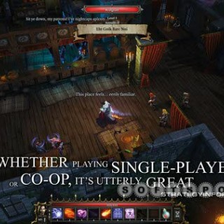 softspot.ir-divinity-original-sin-enhanced-edition-04.jpg