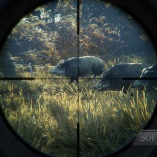 thehunter-call-of-the-wild-04.jpg