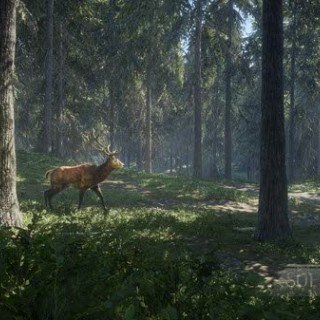 thehunter-call-of-the-wild-03.jpg