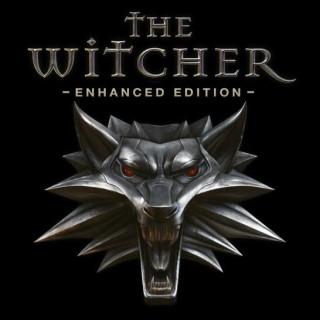 بازی The Witcher: Enhanced Edition