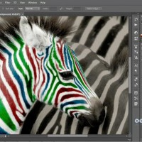 softspot.ir-photoshopcc-one-on-one-0022.jpg