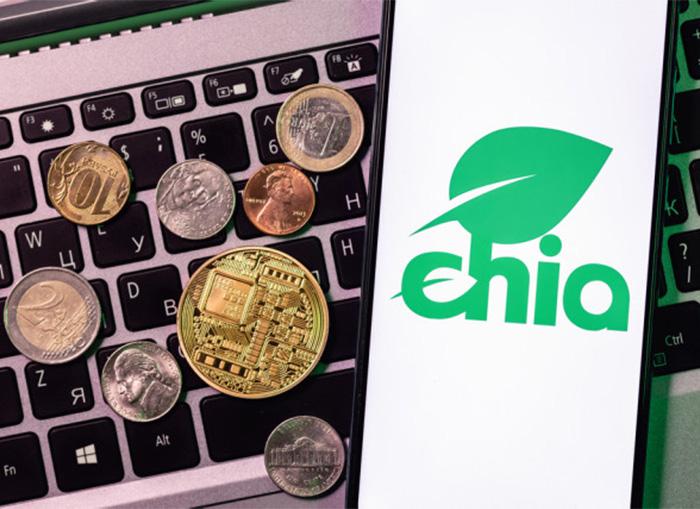 chia-makes-you-rich