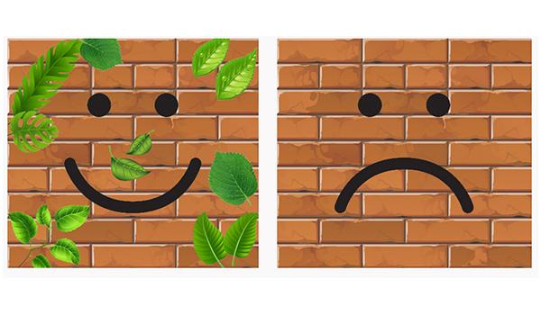 دیوار سبز یا غیر سبز مساله این است!