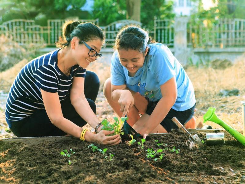 نکاتی برای باغِ خانه ی شما