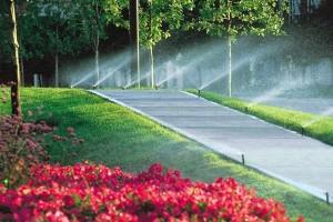 آبیاری فضای سبز شهری