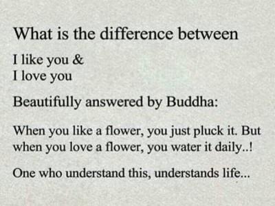 تفاوت دوستت دارم با عاشقتم چیه ؟!