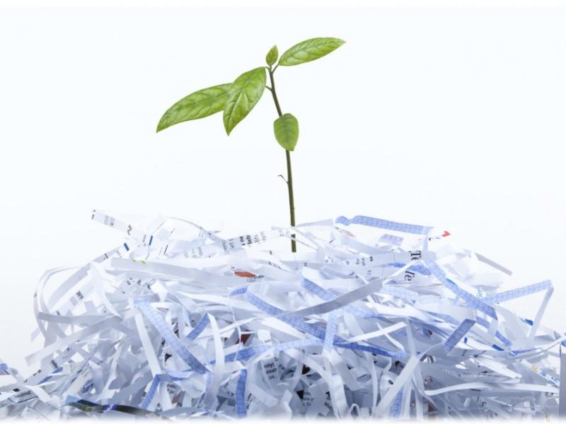 چرا و چگونه باید کاغذ اداری را بازیافت کرد؟